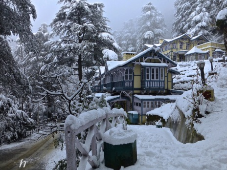 20- Fitting 'into' nature. Local Himalayan and British   aesthetics combine to create this delectable Shimla building, standing out   but humbled as well by the surrounding snows and cedars