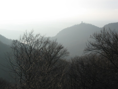 The view from my favourite hike: the Drachenfels, where Siegfried slew the dragon and bathed in its blood. On the right: the ruins of the Löwenburg from the neighbouring mountain.
